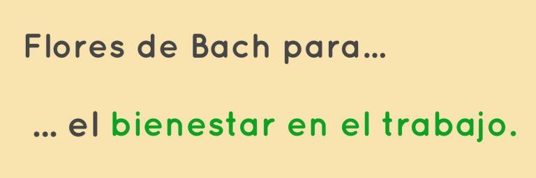 Cabecera de Flores de Bach para el bienestar en el trabajo